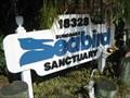 Image for Suncoast Seabird Sanctuary - Indian Shores, FL