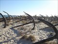 """Image for Anchors Cemetery in """"Praia do Barril"""""""