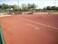 Image for Freestone Park Ballfields - Gilbert, AZ