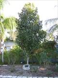 Image for Florida Botanical Gardens 9/11 Memorial - Largo, FL