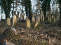 Image for Bývalý židovský hrbitov / the former Jewish cemetery, Osek, Czech republic