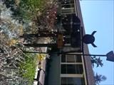 Image for Egan Middle School Viking - Los Altos, CA