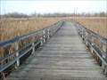 Image for Boardwalk, Parc-nature du Bois-de-l'Île-Bizard, QC, Canada