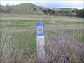 Image for Bench Mark AD71. Ash Pit Road. North Is. New Zealand.