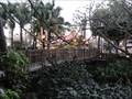 Image for Swiss Family Robinson Bridge - Disney World, FL