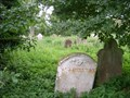 Image for The Old Graveyard of St Helen - Colne, Cambridgeshire, UK