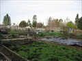 Image for Wallenberg Park Community Garden - San Jose, CA