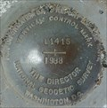 Image for National Geodetic Survey Mark L1415 Vertical Control - San Onofre, CA