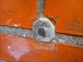 Image for RD Meetpunt: 13932911 - Harpel NL