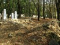 Image for židovský hrbitov / the Jewish cemetery, Postrižín, Czech republic