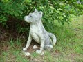 Image for Dog Waiting for Its Owner - Green Cove Springs, Florida