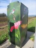 Image for Hummingbirds on Green - Watsonville, CA