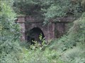 Image for Mierystock Tunnel - Upper Lydbrook, Gloucestershire, UK