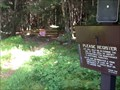 Image for Phonicia-East Branch (Denning) Trail - Catskills, NY