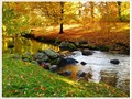 Image for Muskauer Park - Sachsen/Lebus, D/PL