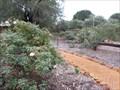 Image for Heritage Rose Garden , Pinjarra, Western Australia