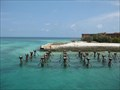 Image for Dry Tortugas National Park