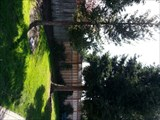 Image for Cy Coben - Redwood  City, CA