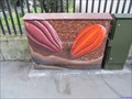 Image for Cocoa Pods - Bermondsey Street, London, UK