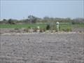Image for San Martin Cemetery - Lasara TX