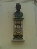 Image for CHEMESTRY: Fritz Pregl 1923 - Ljubljana, Slovenia