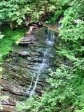 Image for Pine Creek Gorge Waterfalls