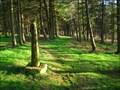 Image for Shillito Wood Cross, Derbyshire