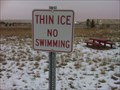 Image for Thin Ice, No Swimming