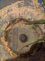 Image for State Surveymark 154194, Redgum Ridge, NSW, Australia