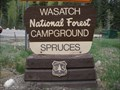 Image for Spruces Campground - Big Cottonwood Canyon - Salt Lake City, UT