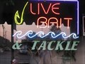 Image for Live Bait - Bedford, Ohio