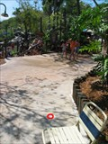 Image for Typhoon Lagoon--Storm Slides