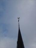 Image for RD Meetpunt: 37932201 - westland