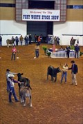 Image for Fort Worth Stock Show and Rodeo - Fort Worth, Texas