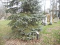 Image for Ray Adams - Olde Methodist Cemetery - Westerville, OH