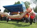 Image for Colorado Dragon Boat Festival - Denver, CO