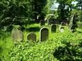 Image for židovský hrbitov / the Jewish cemetery,Tucapy,  Czech republic