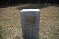 Image for 20th Tennessee Infantry Regiment Marker  - Chickamauga National Battlefield
