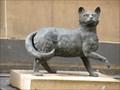 Image for Trim the Cat - Sydney, NSW, Australia