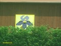 Image for The Tennessee Iris in Unicoi County TN