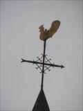 Image for RD meetpunt: 32030301 G.K. Zwartebroek