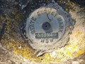 Image for Survey Mark 51394, Lilyfield, NSW.