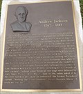 Image for Andrew Jackson 1767-1845 - Thoroughbred Park