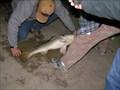 Image for Indianola Fishing Marina - Indianola, TX