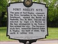 Image for Fort Negley