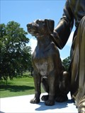 Image for Dog & Cat Watched Over By Angel - Daytona Beach, FL