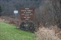 Image for Pine Creek Gorge - Big Meadows Canoe Access - Ansonia, PA