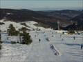 Image for Skigebiet Willingen - Ettelsberg