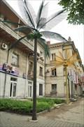 Image for Shop Palm Trees, Sevastopol, Ukraine