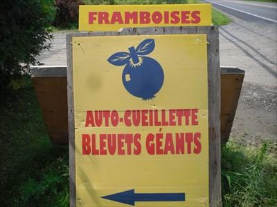 Autre affiche pour les petits fruits toujours 303 Côte Saint-Louis